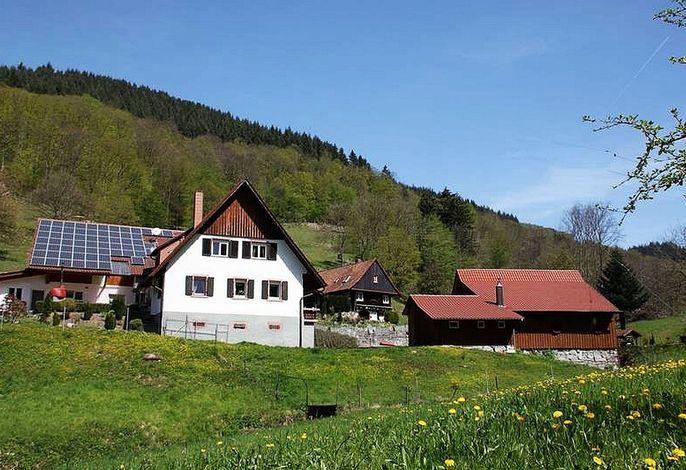 Ferienhof Huber in Ohlsbach