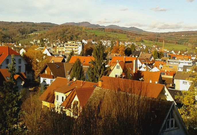Haus Lange