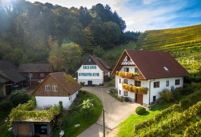 Hofstelle + Haupthaus