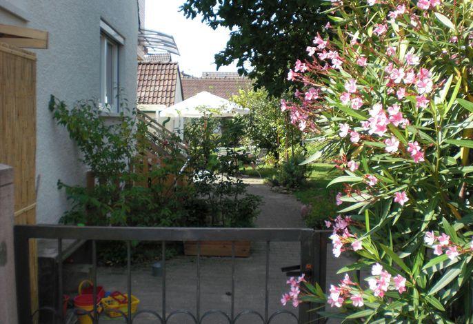 Bilck durch den Garten