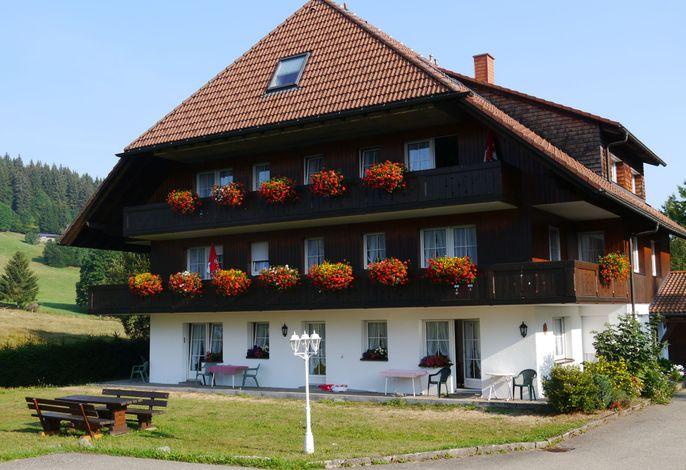Gasthof-Hotel Hirschen, (Schluchsee), LHS03971