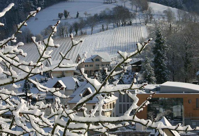 Weingut-Brennerei-Ferienwohnungen Eugen Wissler