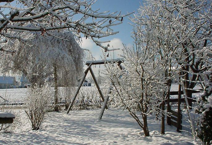 Blick über den Garten auf das Feld im Winter