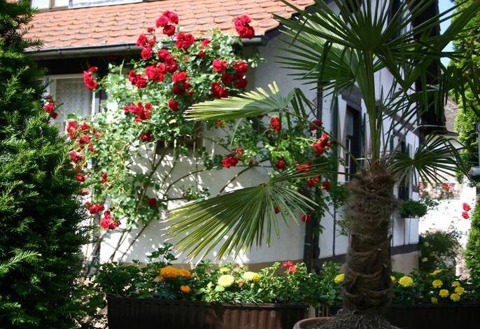 Appartements Tannenhof Garten