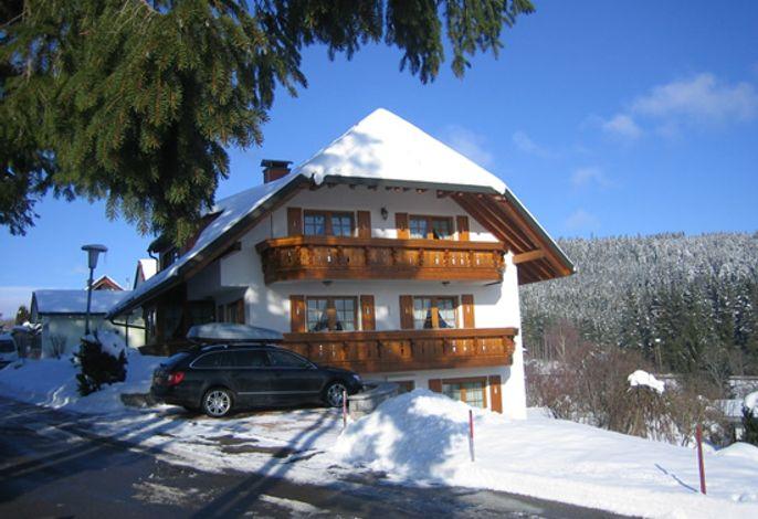 Haus Waldvogel Winter