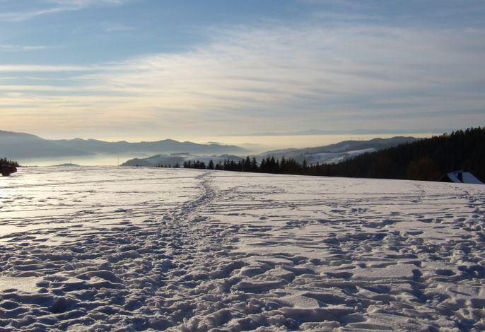 Winterlandschaft oberhalb des Kapfenmathishof