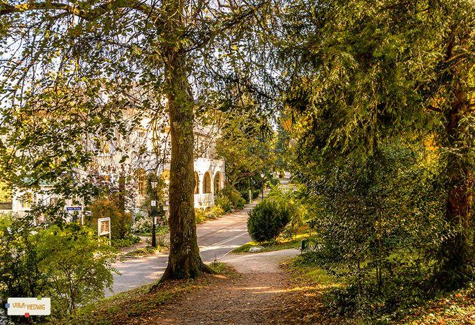 Blick vom Kurpark auf die Villa Hedwig
