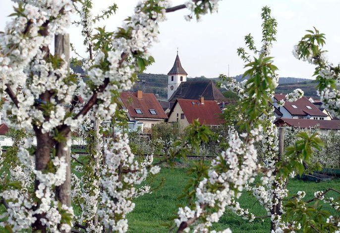 Haus Fliegerhorst