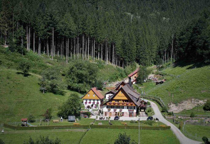 Hansenhof mit Wiesen
