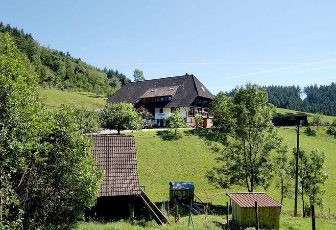 Ferienwohnung Rinkenbachhof, (Schenkenzell), LHS04969