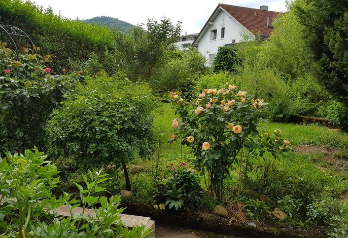 Garten der Ferienwohnung 1