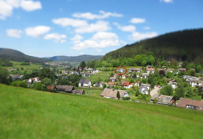 Lage: Nur wenige Gehminuten vom Ortskern Baiersbronn entfernt