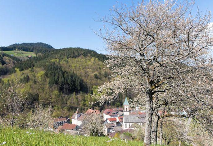 Ferienwohnung Brumichelhof