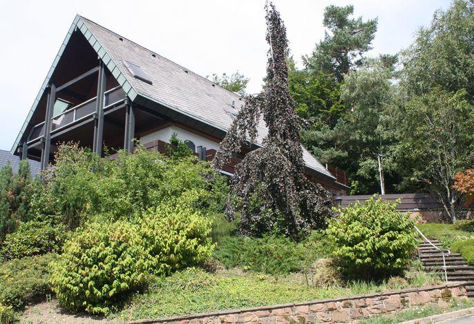 Haus Talblick Sasbachwalden Außenansicht 21