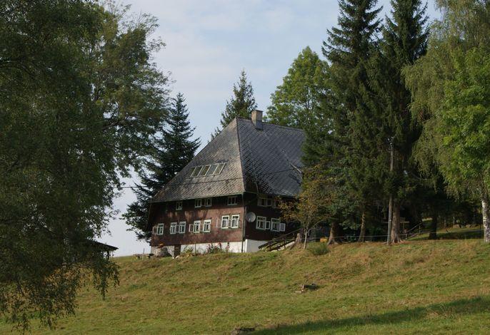 Feissesberghof im Sommer