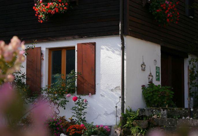 Buchenhof, (Zell am Harmersbach), LHS06528