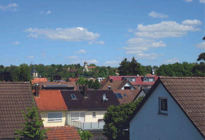 Aussicht über Sinsheim