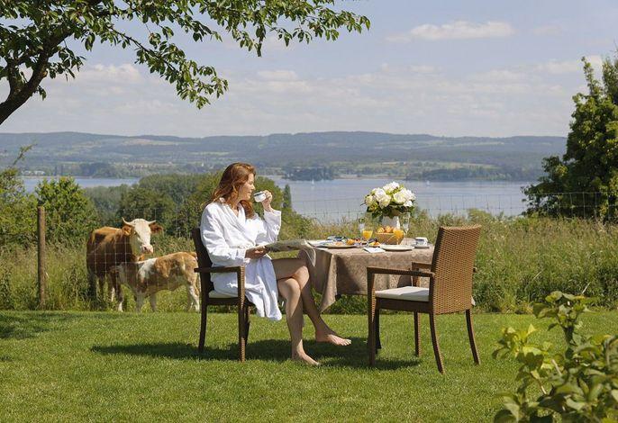 Ferienwohnungen Hotel Gasthaus Hirschen