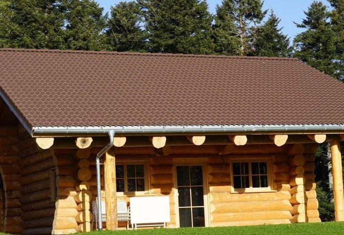 Almhütte im Schwarzwald