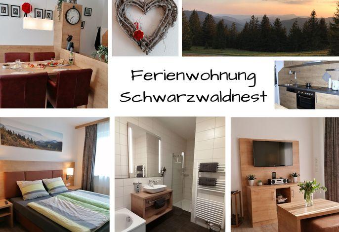 Ferienwohnung Feldberg Schwarzwaldnest, (Feldberg), LHS07559