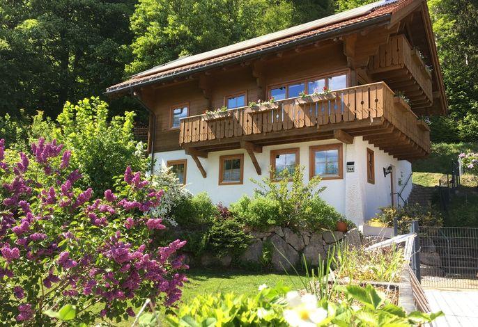Alleinstehendes Ferienhaus am Waldrand