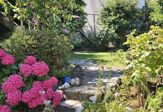 Blick Richtung Garten