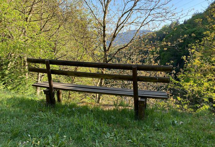 Aussichtsbank im Garten