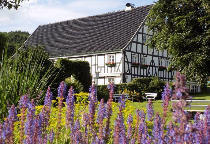 Bauernhof Pension Schneider - Garten