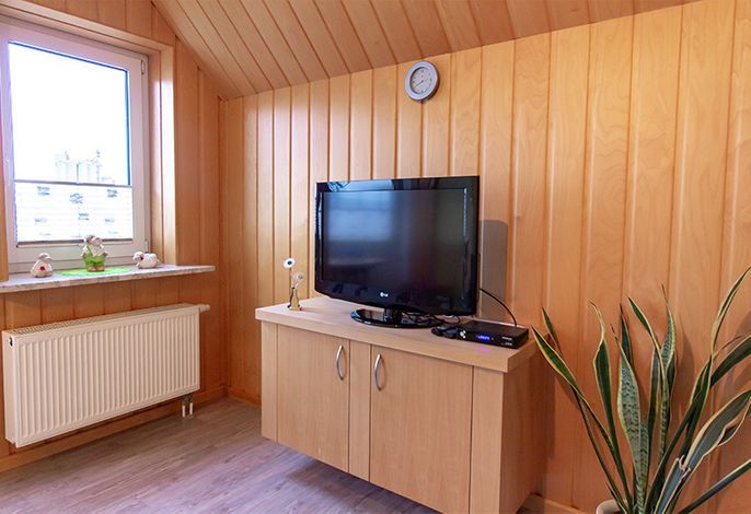 Flat TV im Wohnraum