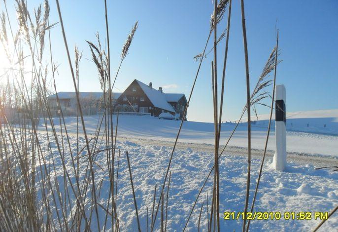 Ferienhof Dethlefsen im Winter
