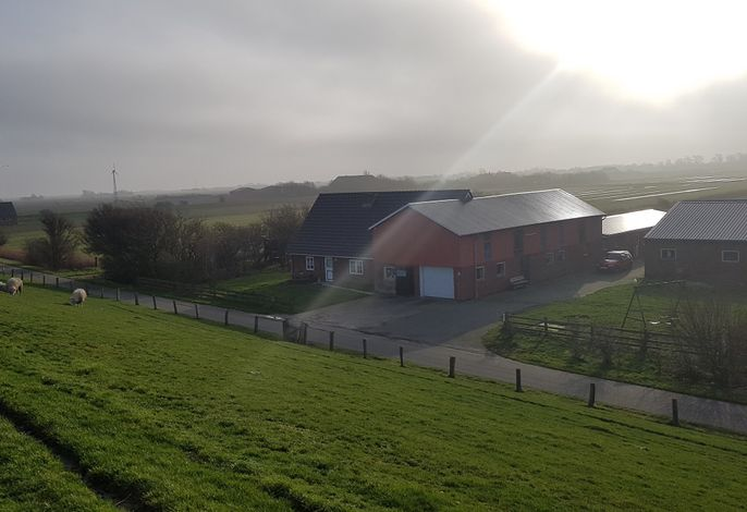 Der kleine Bauernhof vom Deich aus