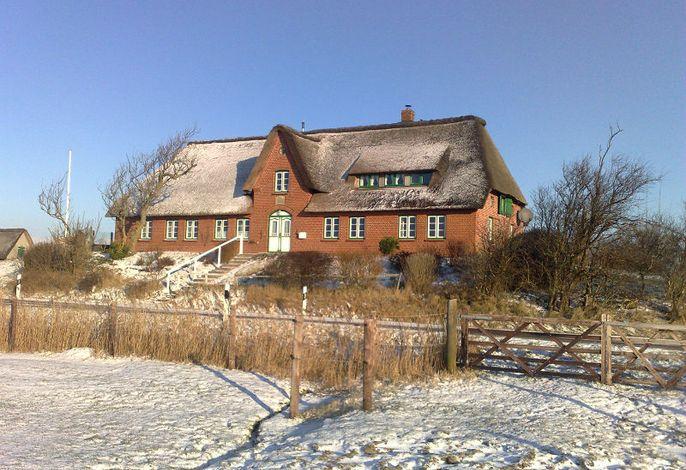 Schulze-Warft im Winter