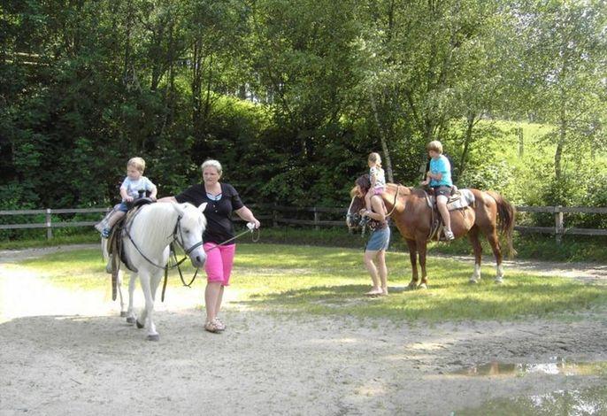 Kinder auf Pferden