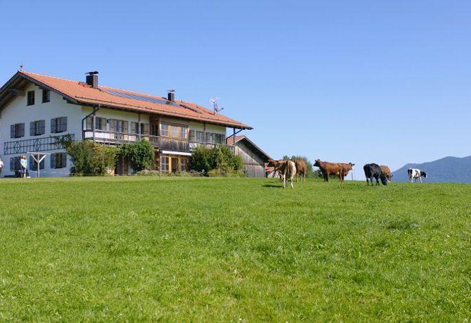 Bergblick und Kuhglockengeläut