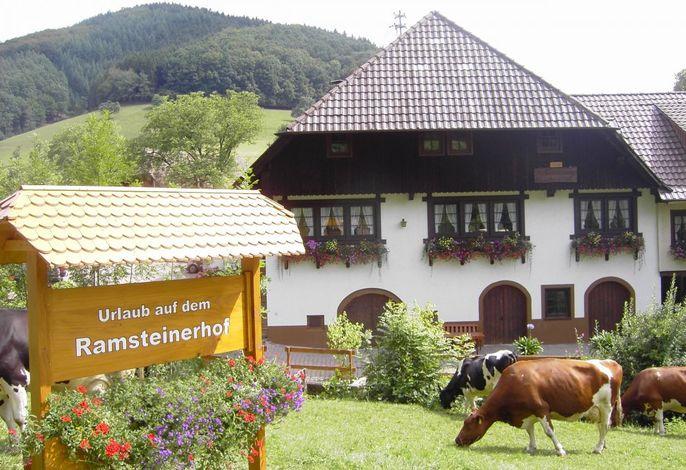 Ramsteinerhof Hausach