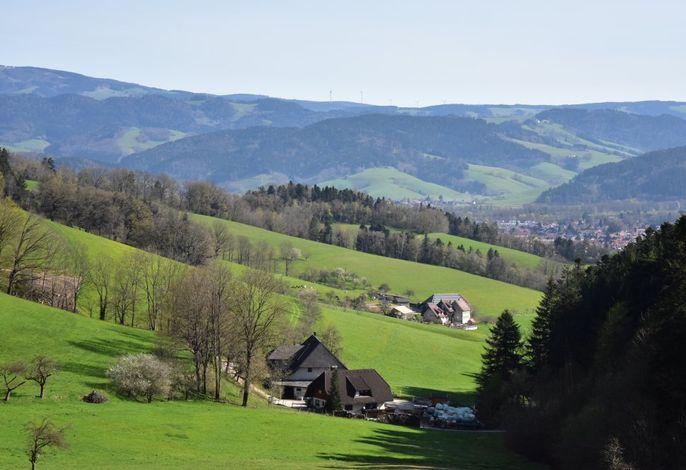 Imposante Landschaft,Hugenhof von oben
