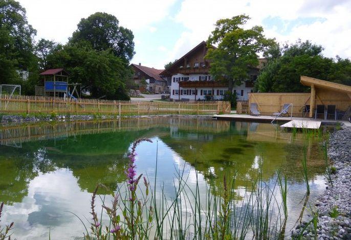 Haus mit Schwimmteich