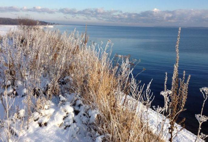 Wunderschöne Küste im Winter