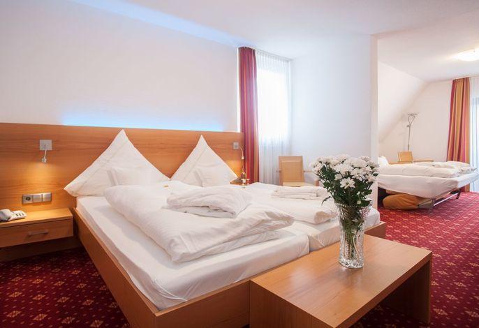 Hotel Hessenhof (Winterberg/Stadt) -