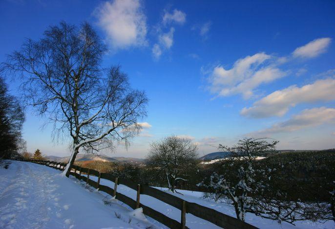 Winter am Schmantel