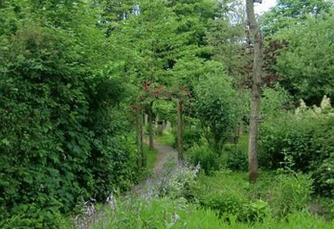 Großer Garten mit vielen Pflanzen
