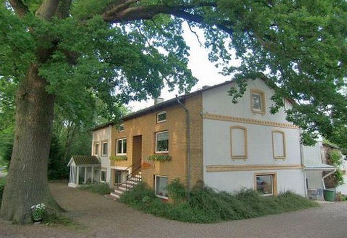 Haus von außen mit Bäumen