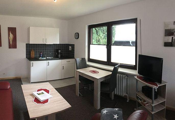 Kombinierter Wohnraum mit Küchenzeile