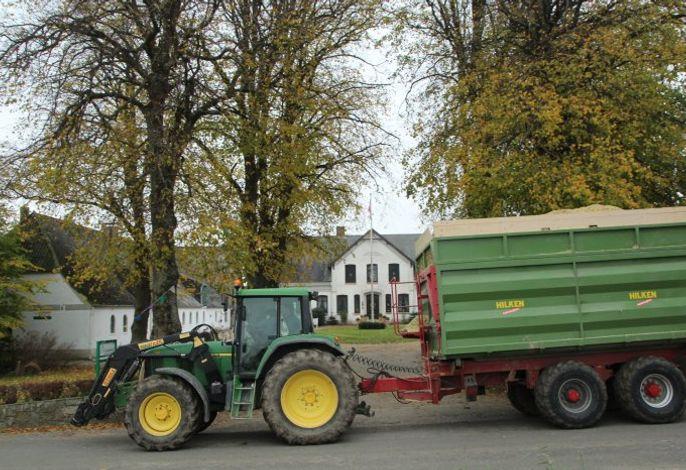 Lindenhof: Maissilage