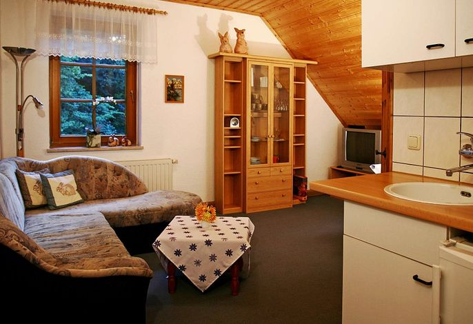 Wohnzimmer mit Küchenzeile in der Ferienwohnung Hasensasse