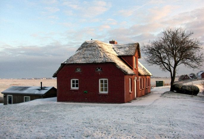 Ferienhaus Reetdachhaus Blick ins Tüterland