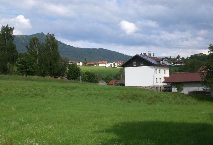Ferienhaus mit Osser