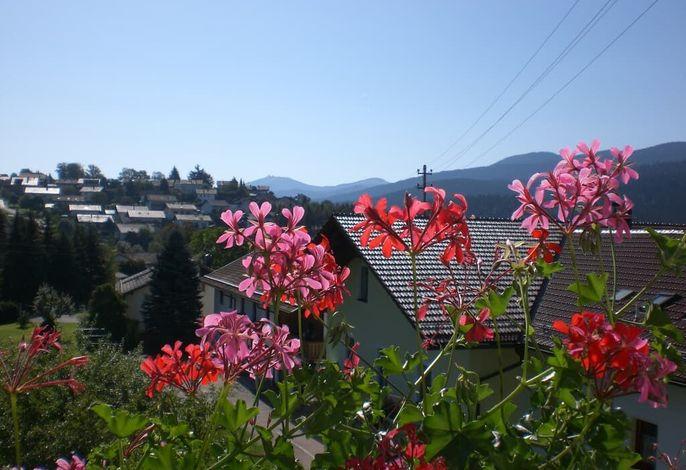 Blick vom Balkon zum