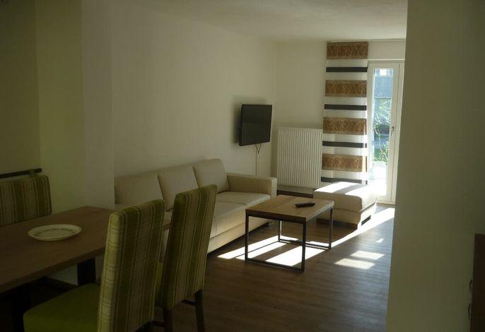 Wohn-Schlafbereich mit Sofa und TV