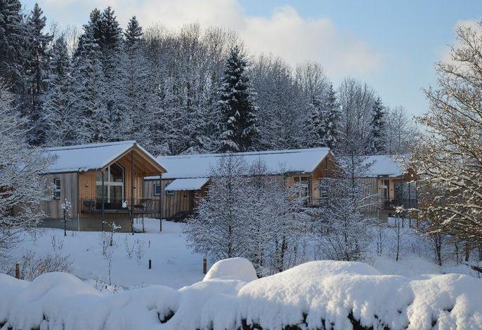 Winterbild Chalet